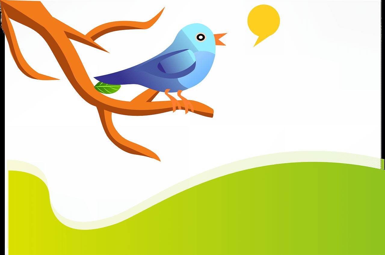 twitter marketing best practices