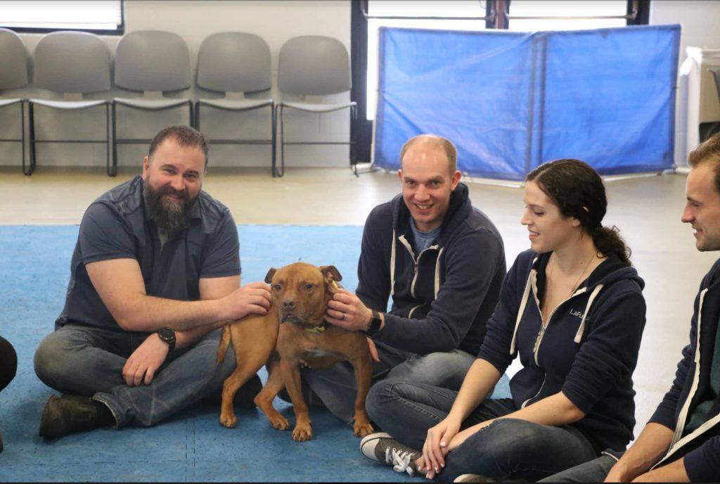 LaFleur staff enjoy petting a dog.